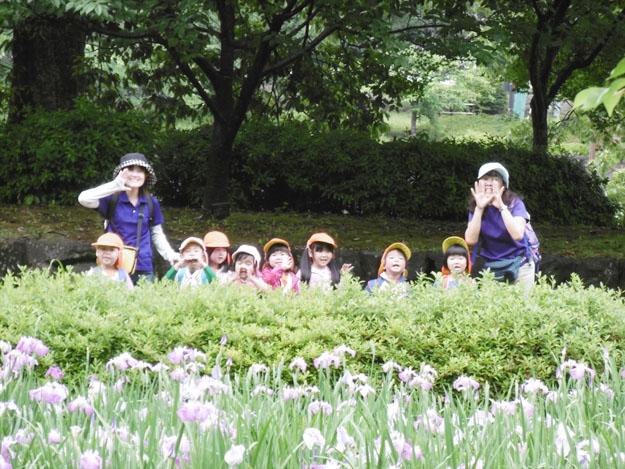 大村公園花菖蒲見学